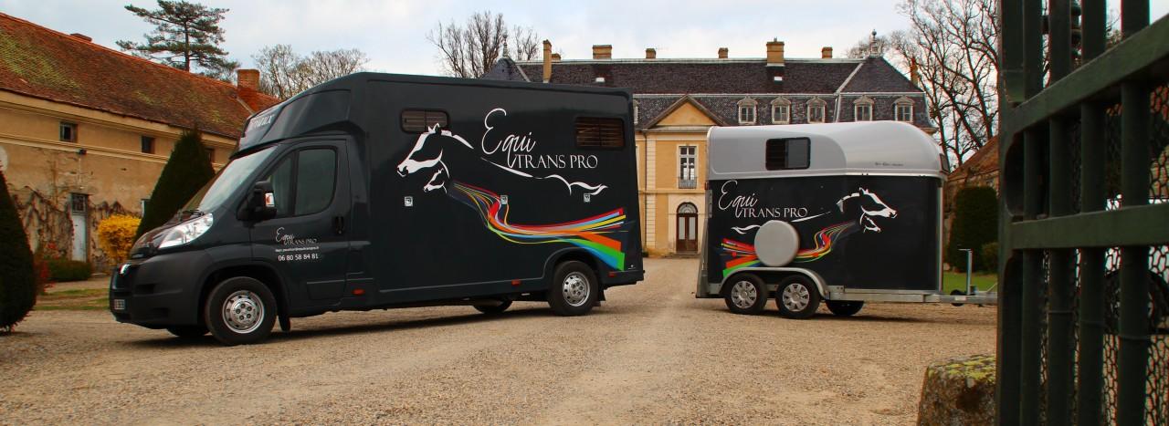 Transports de chevaux
